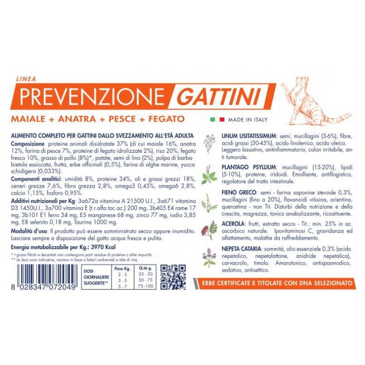 prevenzione gattini 2